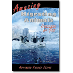 Amazing Migrating Animals