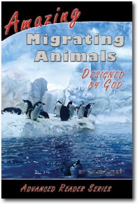 Amazing Migrating Animals