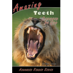 Amazing Teeth